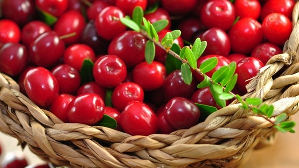 Cranberry Juice 100 g = 46 kcal